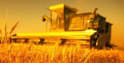 Страхование посевов в Тюменской области прекратилось