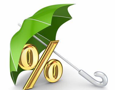 В Государственную Думу внести законопроект о возврате части страховых взносов заемщикам